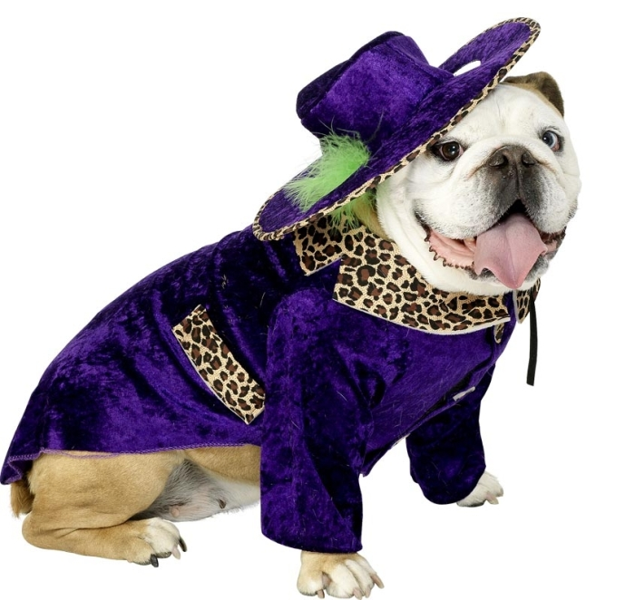 cool-dog-fancy-dress-costume-9084-p